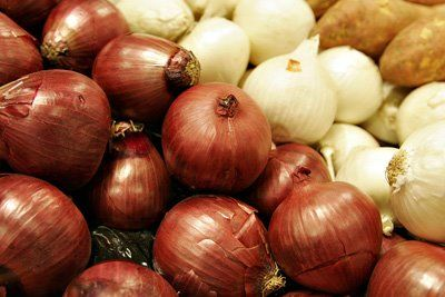 Propiedades del Ajo y de la Cebolla