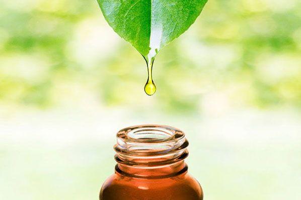 Curso de Aromaterapia Profesional